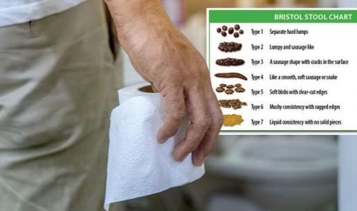 Are your stools healthy? Bristol Stool Chart reveals what they should look like