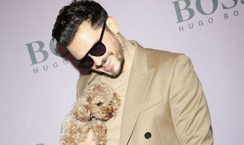 Orlando Bloom and Katy Perry's dog Mighty is missing