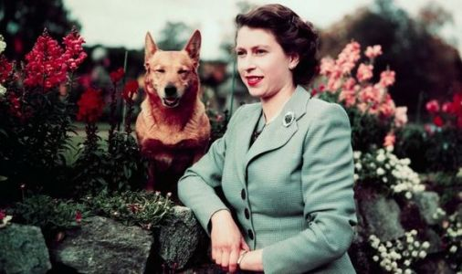 Queen's former chef reveals very extravagant menu for royal corgis