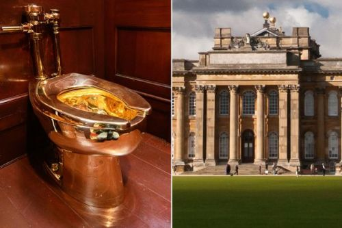Man, 36, arrested after £5million solid gold toilet stolen from Blenheim Palace