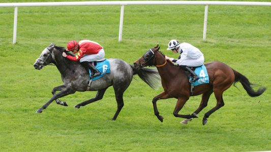 Horse Racing Tips: Timeform's three best bets from Leopardstown on Saturday