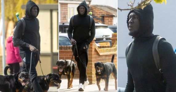 Stormzy emerges from self-isolation to walk dogs weeks after deleting social media
