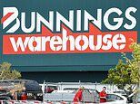 New Zealand coronavirus covid-19 SEVEN Bunnings stores will close and 145 staff will be laid off