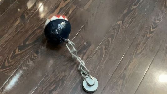 Adorable Animated Super Mario Chain Chomp Toy Will Help You Practice Safe Social Distancing