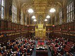 Peers to be paid '£160 just for clicking a button' under House of Lords remote-voting plans