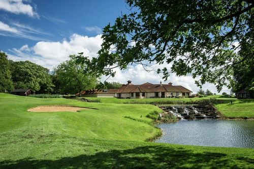 The Rise of Golf: Increasing Popularity of Golf in the US