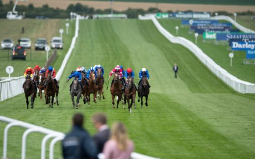 Marlborough racing tips and best bets for Sunday July 12