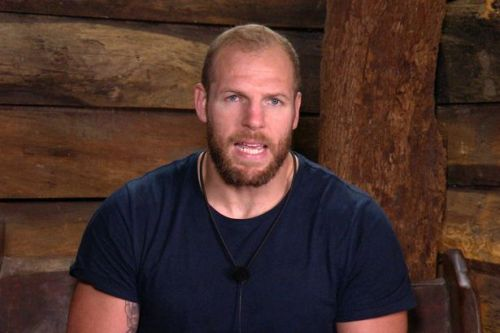 James Haskell lost lucrative Range Rover deal as boasted about sex too much