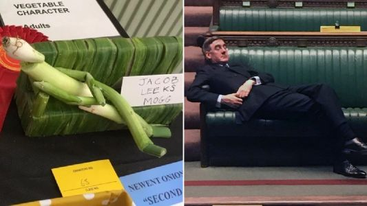 Jacob Leeks Mogg 'vegges out' in the House of Commons