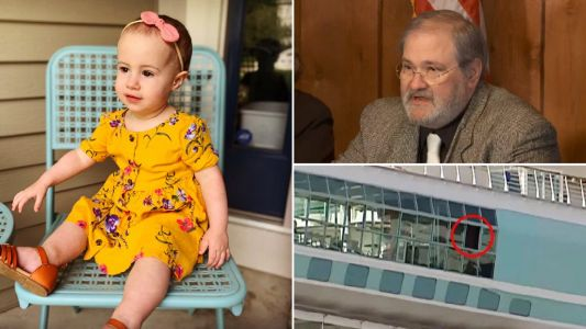 Cruise line says granddad is entirely to blame for dropping toddler to her death off ship