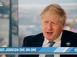 Johnson declines to commit to getting US trade deal before next election