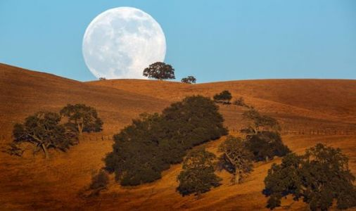 Super Moon 2019: Best time and place in Australia to see tonight's SPECTACULAR Supermoon