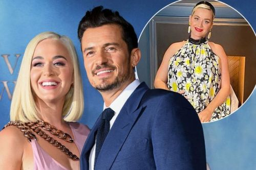 Orlando Bloom calls pregnant Katy Perry 'force of nature'