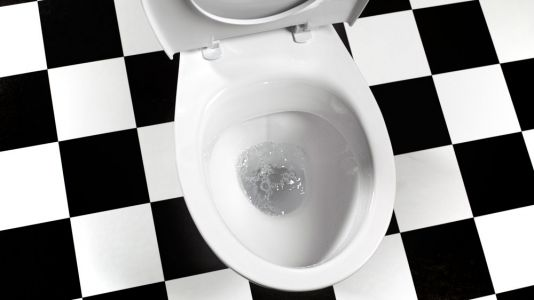 6 UX lessons you can learn in the toilet