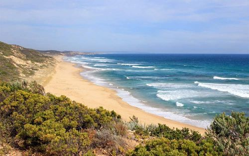 The best beaches in Melbourne, plus the ones worth taking a day trip for