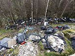 Stunning beauty spot is blighted 'beyond belief' by flytippers