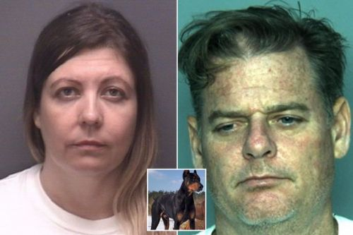 Woman 'had threesome with Doberman and husband' in master bedroom video found at their kennel business