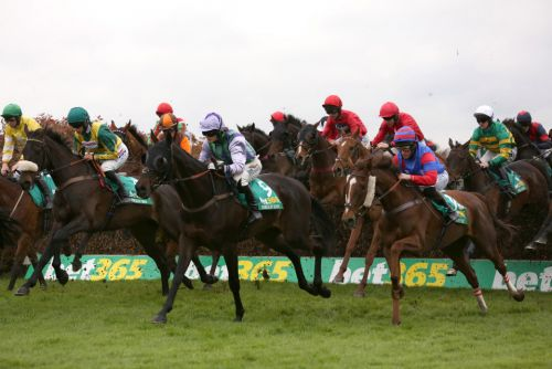 Templegate's racing tips: Sandown, Exeter, Sedgefield and Newcastle - Betting preview for Friday