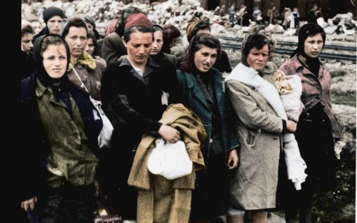 Auschwitz Untold: in Colour, review - the startling force of seeing the Holocaust in colour