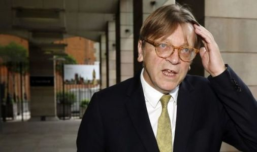 Verhofstadt's attempt to one up UK on Twitter torn apart: 'EU citizens never get a say!'