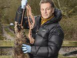 Dead badger is strung up on TV presenter Chris Packham's front gate