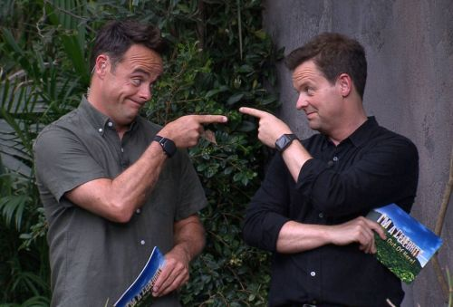 Ant and Dec to get all nostalgic as they reflect on 30-year TV career in online event