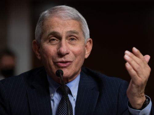 President Trump reportedly slammed Anthony Fauci as 'a disaster' in a campaign phone call