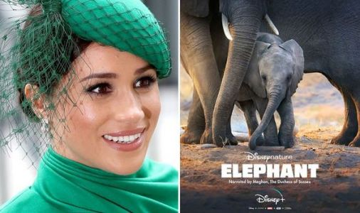 Meghan Markle Elephant review: Duchess of Sussex's Disney+ debut is warm family fun