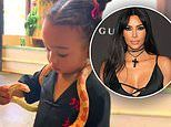 Kim Kardashian shares video of daughter Chicago with a snake around her neck: 'My brave girl'