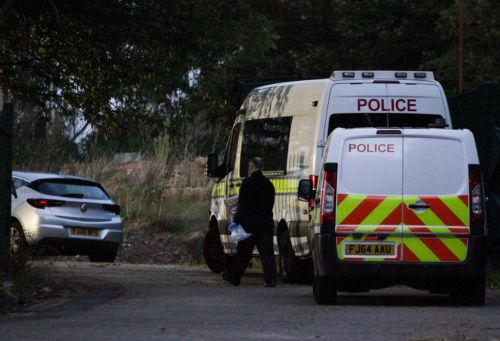 Discovery of 'human skull might be linked to murder eight years ago'