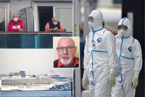 Coronavirus: Brits stuck on Japan ship 'to fly home' as UK confirms rescue flight plans