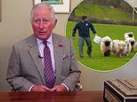Prince Charles felt 'demoralised' by difficulties faced by Duchy of Cornwall tenants during Covid-19