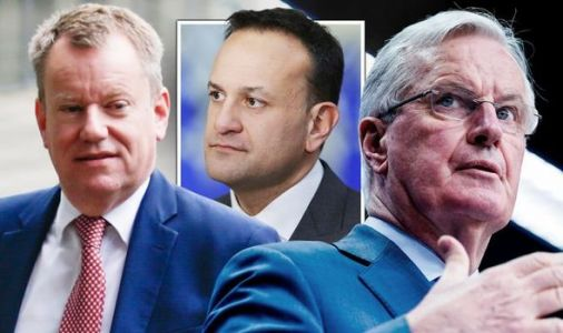 Brexit riddle: How hidden phrase in Irish border solution revealed real fear for EU trade