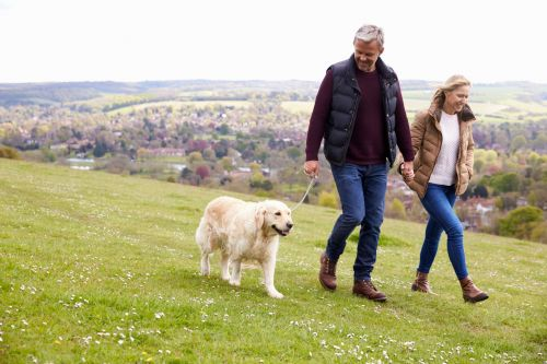 Dog ownership is linked to better heart health, says science