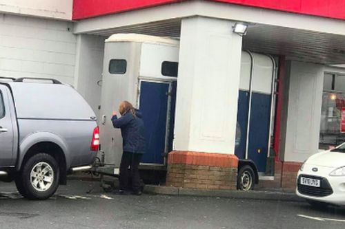 Neigh luck as horse box gets stuck in Scots KFC drive-thru