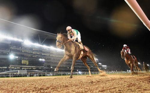 Dubai World Cup Carnival: Tips from a top card at Meydan this Thursday