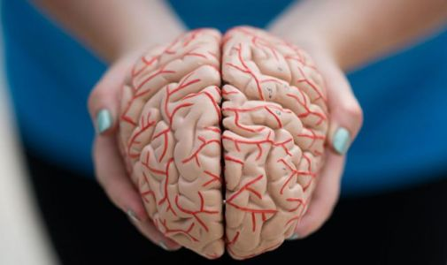 Parkinson's disease may begin before birth, research suggests