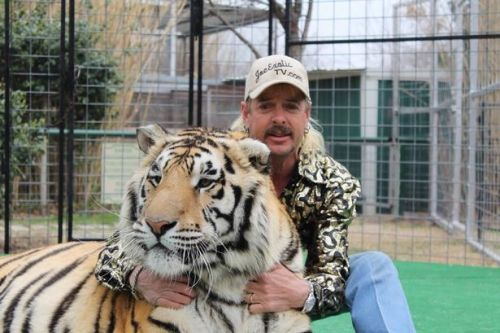 Tiger King Joe Exotic 'ashamed' for keeping wild animals in cages