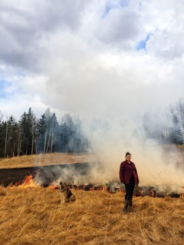 With wildfires on the rise, indigenous fire management is poised to make a comeback