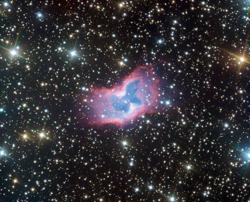 """""""Space Butterfly"""" in Vela offers remarkable view of twin-lobed planetary nebula"""