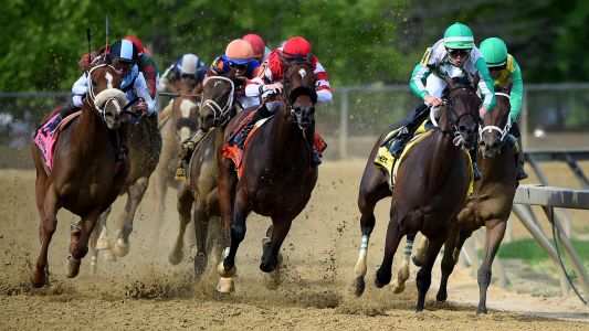US Racing Bets of the Day: Tough customer Demanding is one to back at Tampa