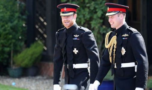 Prince William could take Prince Harry's former military role in royal 'rift' says author