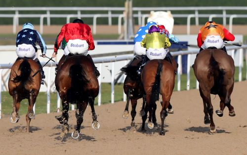 Marlborough racing tips and best bets for Tuesday, January 26