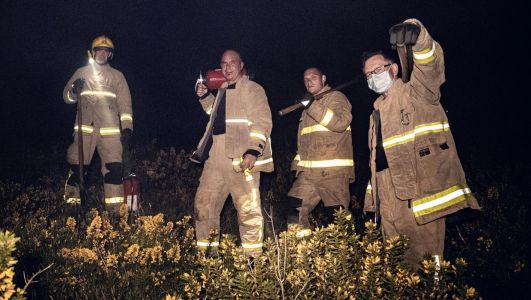 Pictured: Firefighters tackle blaze on White Mountain