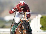 Tiger Roll takes first step on road to Grand National with fifth-placed finish in Boyne Hurdle
