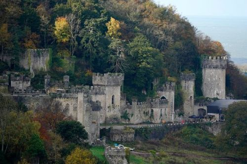 Dead body found in woodland near I'm a Celebrity's Gwrych Castle