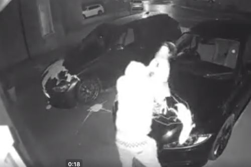 Hooded paint thug caught on camera trashing luxury motors in driveway of home