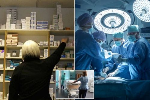 Trade deal with Donald Trump's US after no-deal Brexit could kill off NHS