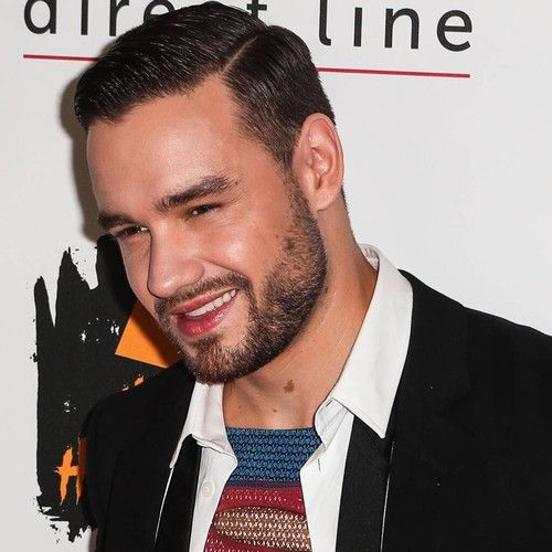 Liam Payne panned for bisexual fantasy song on debut album