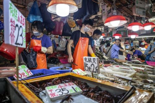 Wuhan wet market 'was not where coronavirus started but was super-spreader site'